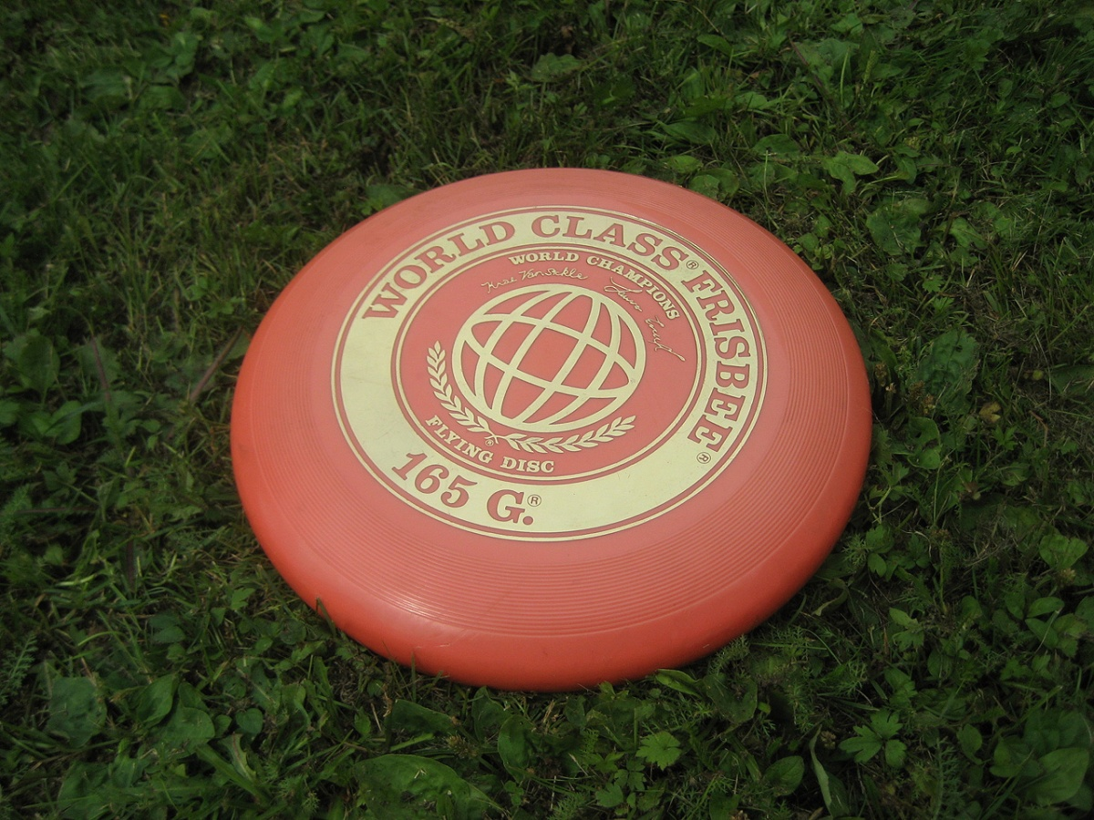 The Frisbee